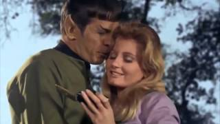 Spock (Leonard Nimoy): I don't think so - SIR.