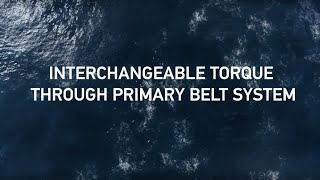 OXE Primary Belt System