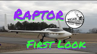 Clever Girl - Raptor Aircraft Prototype First Look - Wasabi Flight Test