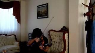 Apocalyptica Fade To Black Violin Cover