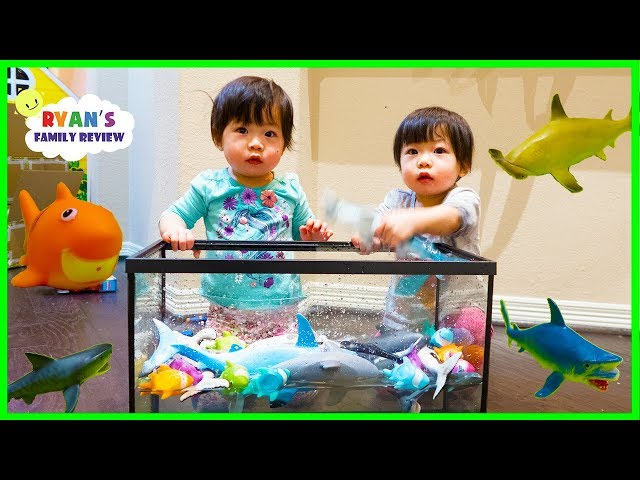 Emma and Kate Learn about Sharks and colors while singing Baby Shark Song