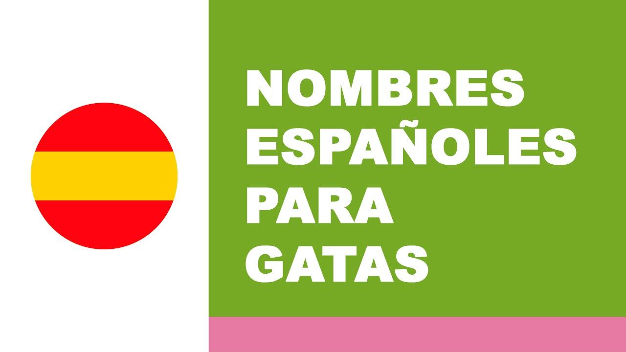 Nombres españoles para gatas