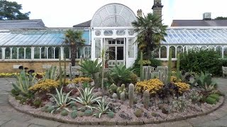My Visit To The Birmingham Botanical Gardens, England