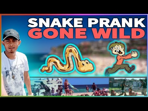 Most Hilariuos Bondi Beach Scary Snake Prank Of 2018| Bondi Rescue Australia | Anis D Knockers