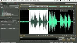 Adobe Audition CS6 - How to Remove Noise from a Clip