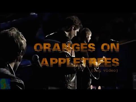Oranges On Apple Trees Lyrics – A-ha