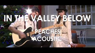 In The Valley Below - Peaches - Acoustic [ Live in Paris ]