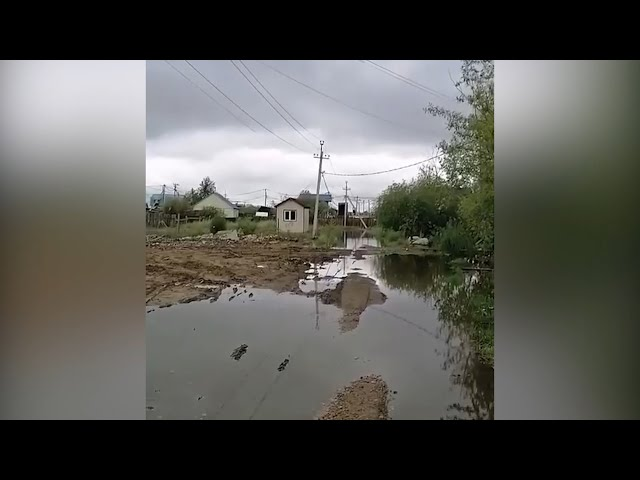 Жители Селиванихи беспокоятся за свой урожай