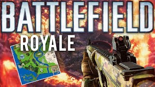 Battlefield Royale What could have been