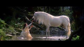 KYST - Unicorn blood
