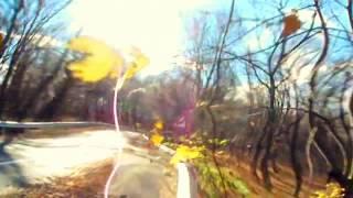Mark Knopfler, Wild Mountain Thyme