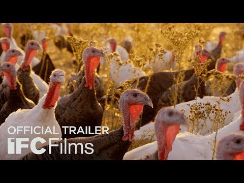Eating Animals - Official Trailer | HD | Sundance Selects [CC] (2018) - Natalie Portman's movie on factory farms