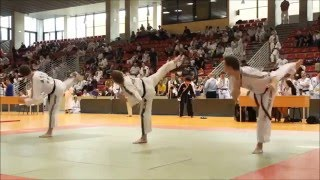 Hapkido Mix (This is Hapkido)