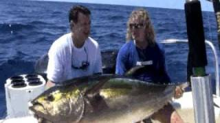 Panama Huge Yellowfin Tuna