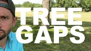 Hitting Tree Gaps in FPV