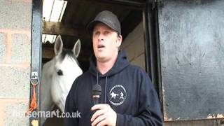 How do you start horse boarding?