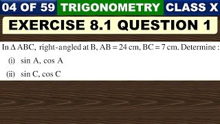 Exercise 8.1 Chapter 8 Introduction to Trigonometry Class 10 Maths