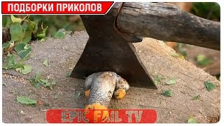 Подборка приколов за Март 2016 (+18) #57 A selection of jokes for March 2016