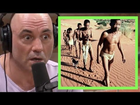 The Hunting of the Khoisan People | Joe Rogan & Forrest Galante