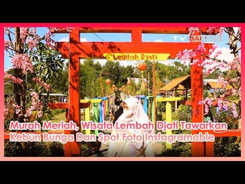 Murah Meriah, Wisata Lembah Djati Tawarkan Kebun Bunga dan Spot Foto Instagramable