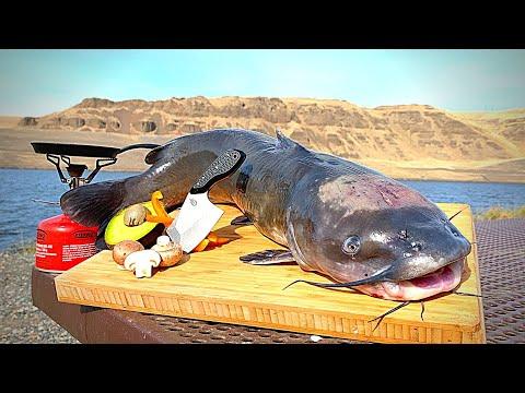 GIANT CATFISH Catch & Cook!!! Bass Fishing in DESERT CANYON!
