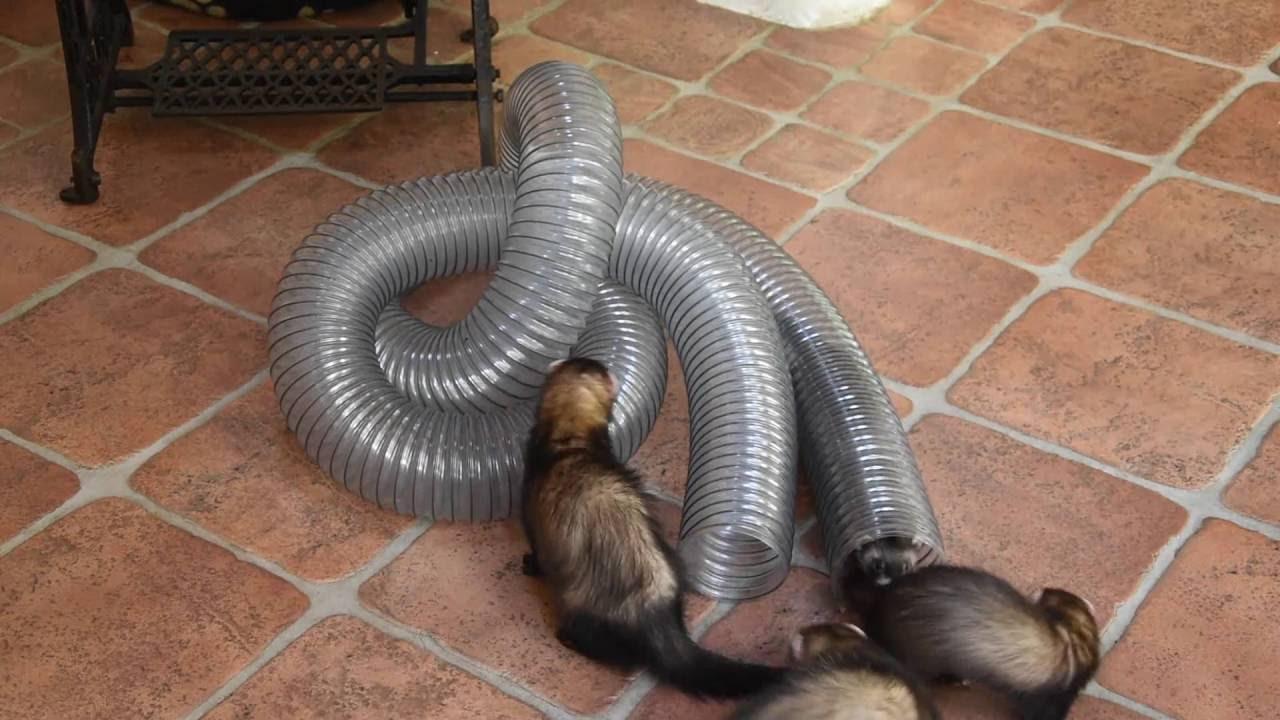 Die Röhre - The Tube - El Tubo