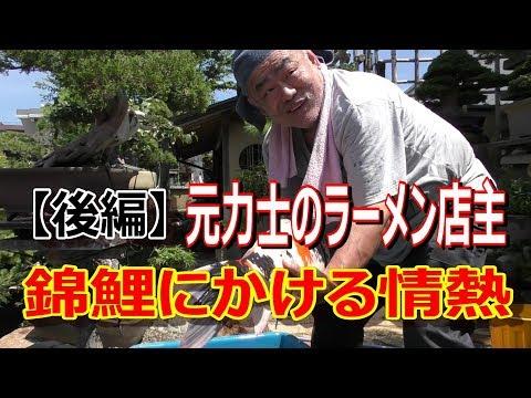 """元力士のラーメン店主 錦鯉にかける情熱(後編)""""Nishiki Koi  , Koi Fish & Sumo & Ramen &Bonsai""""EP3"""