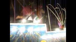 preview picture of video 'Inicio del Carnaval 2014 en Las Tunas'