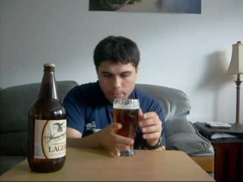 Yeungling Lager   Persianlad's Beer Reviews