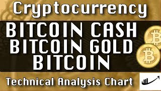 BITCOIN CASH : BITCOIN GOLD : BITCOIN Update CryptoCurrency Technical Analysis Chart