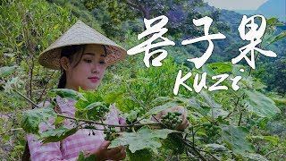 Known as the treasure house of nutrition: Kuzi (Bitter Berry)