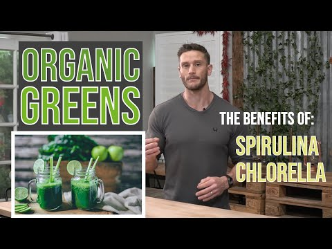 What Does Chlorophyll Do? The Benefits of Spirulina and Chlorella in Antler Farms Organic Greens