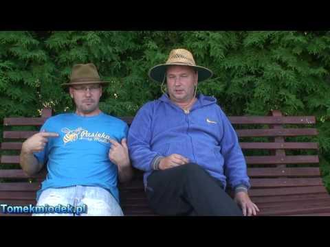 Tuning pszczół M. Lewandowski &amp T. Miodek