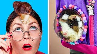 Cómo Escabullir Mascotas A Clase / 8 Bromas y Trucos Para Mascotas