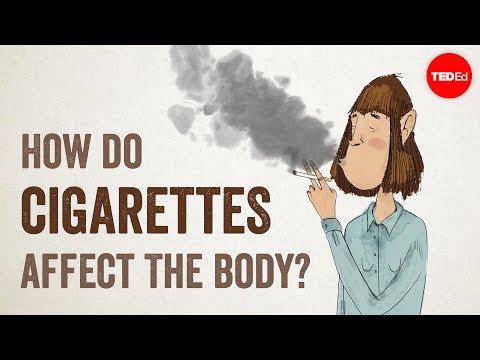 What Cigarette Smoking Does to the Human Body