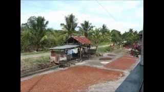 preview picture of video '【Dari K(ダリケー)】 Dari K & Polewali,   Proyek Kakao dan Biomass(字幕有)'