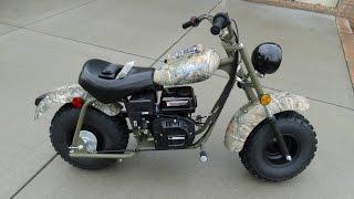 Baja Warrior 200 Mini Bike Review