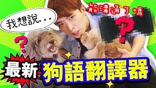 淘寶開箱:我能與愛犬溝通了 ?🐶最新一代「狗語翻譯器」!Muffin第一句跟我說的話是… (中字)