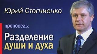 Разделение души и духа - Юрий Стогниенко, 24.11.2013