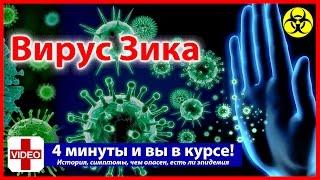 ВИРУС ЗИКА - Лихорадка, Симптомы, осложнения, История