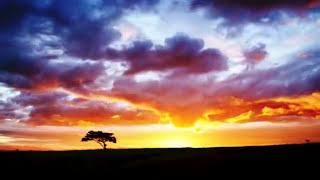 Acrimony - Firedance