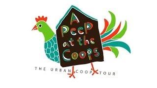 East Dallas Urban Backyard Chicken Coop Tour