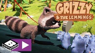 Grizzy I Lemingi | Zagadka Czekoladowego Smarowidła | Boomerang