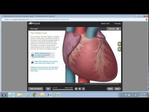 A.D.A.M. - Health Care Marketing Vendor - Healthcare Marketing and ...