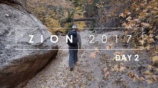 Zion Fall 2017: (Day 2) Large Format Landscape Photography In Zion