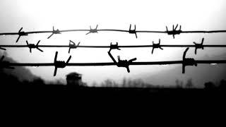 Свидетельства узников