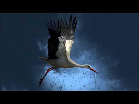 Вальс дождя Фредерик Шопен классическая музыка слушать онлайн. Красивая музыка для души.