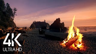 (8 Hours) 4K Campfire On Beach - Crackling Fire With Ocean Waves Sounds