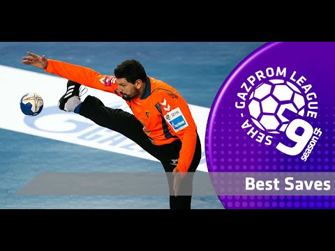 Best of Sterbik, Mikler, Pesic, Stevanovic and OTHERS through the years! I Best saves of SEHA