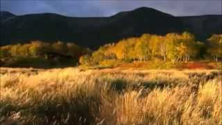 Howard Jones -Natural